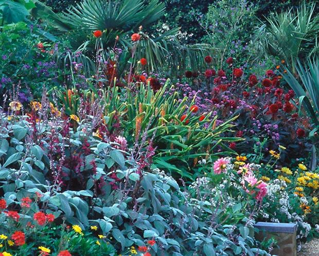 Een border in de Exotic Garden