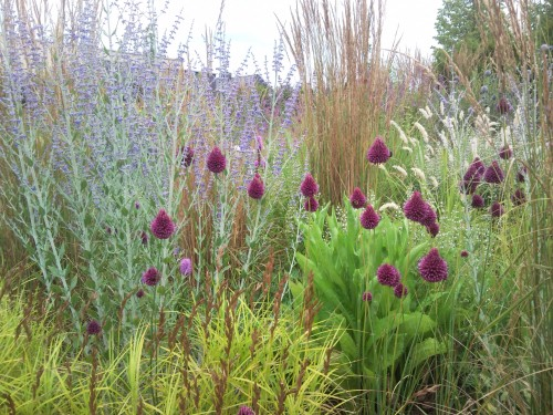 Detail natuurlijke tuin, Piet Oudolf