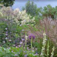 De Villatuin in Persingen:  een tuin zo mooi dat het bijna pijn doet!