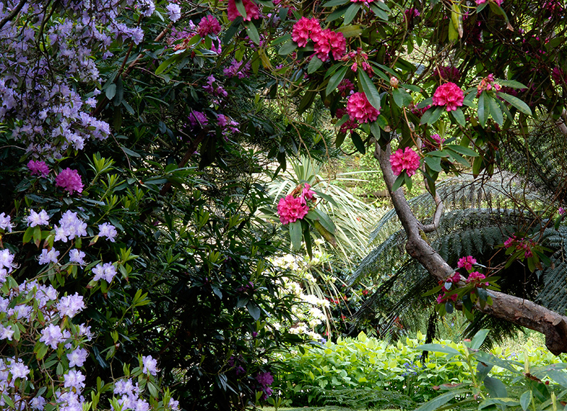 gardens130078168921553900_wgom12-logan-house-3