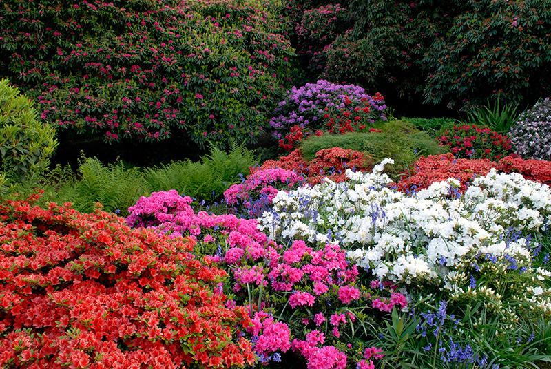 gardens130078170274247242_wgom12-logan-house-1