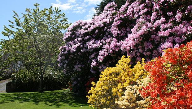 logan-house-gardens130017914078514160_featured