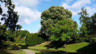 tersteeg-bilderdijkpark-bussum-20140617_192646-kopie