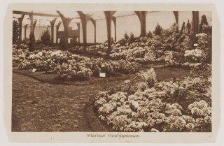 tersteeg-flora-1925-noordhollands-archief-1kna003004565