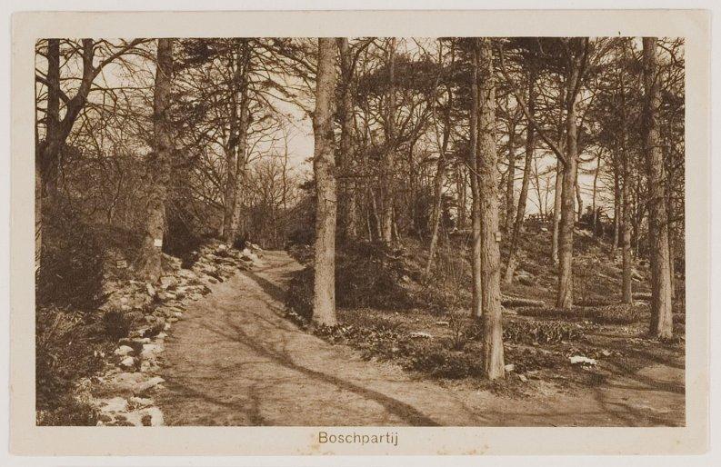 tersteeg-flora-1925-noordhollands-archief-2kna003004566