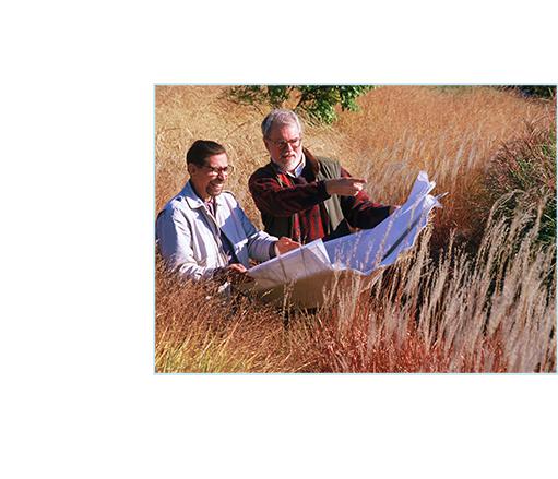 slider-james-wolfhang-field