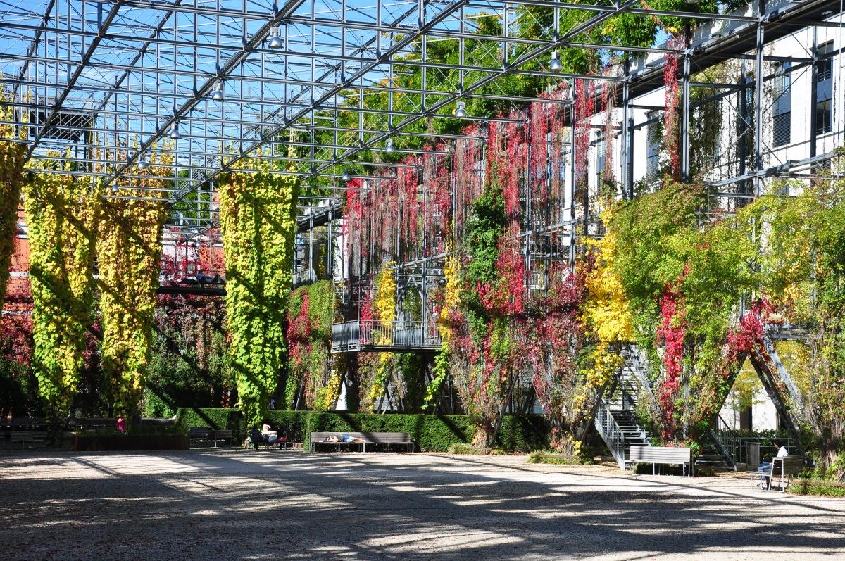 Het MFO park in Zurich: de comeback van klimplanten als groene muur