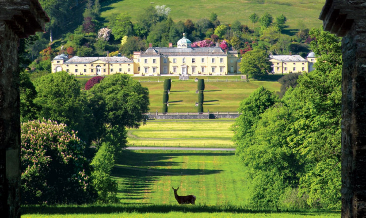 Castle Hill Gardens met één van de mooiste bostuinen van het V.K