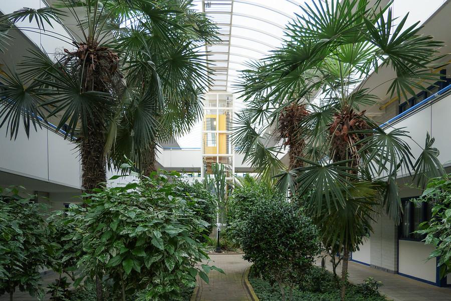 Tuin- en landschapsarchitectuur heeft medische sector veel te bieden