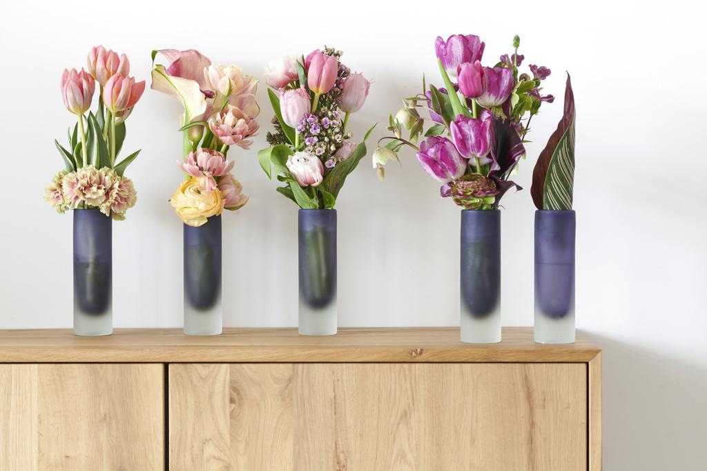 Tulpen in huis; de ideale kickstarter van 2019