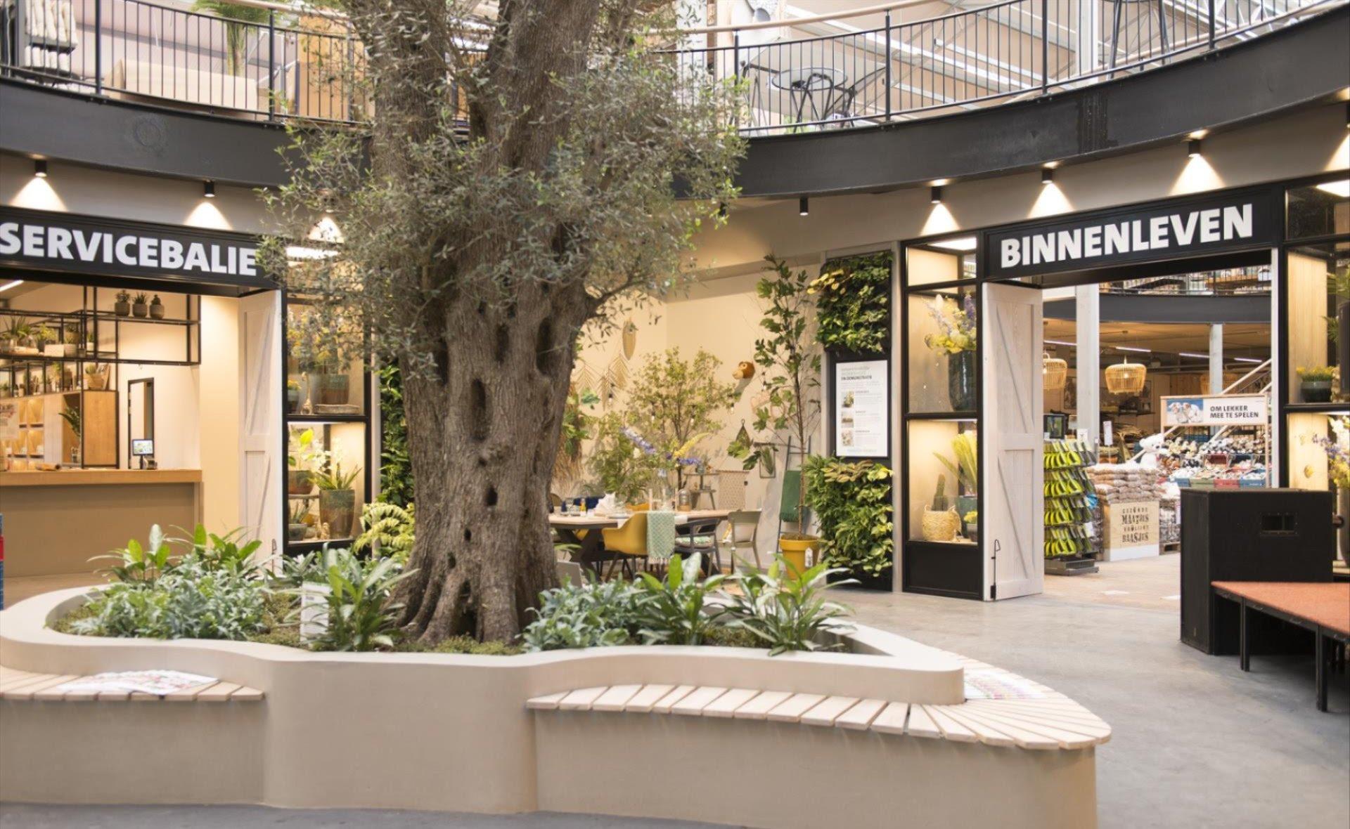 TUINBULLETIN:  Strokenteelt, Wilde Weelde & De levende tuin, Rozen snoeien en flagshipstore Intratuin