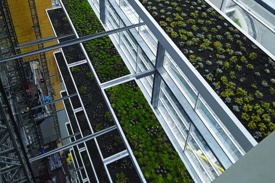 Daktuin van 25.000 m2 voor European Patent Office in Rijswijk