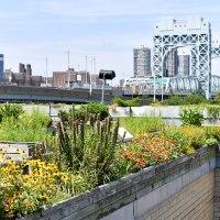 New York City Parks heeft jarenlange ervaring met groendaken