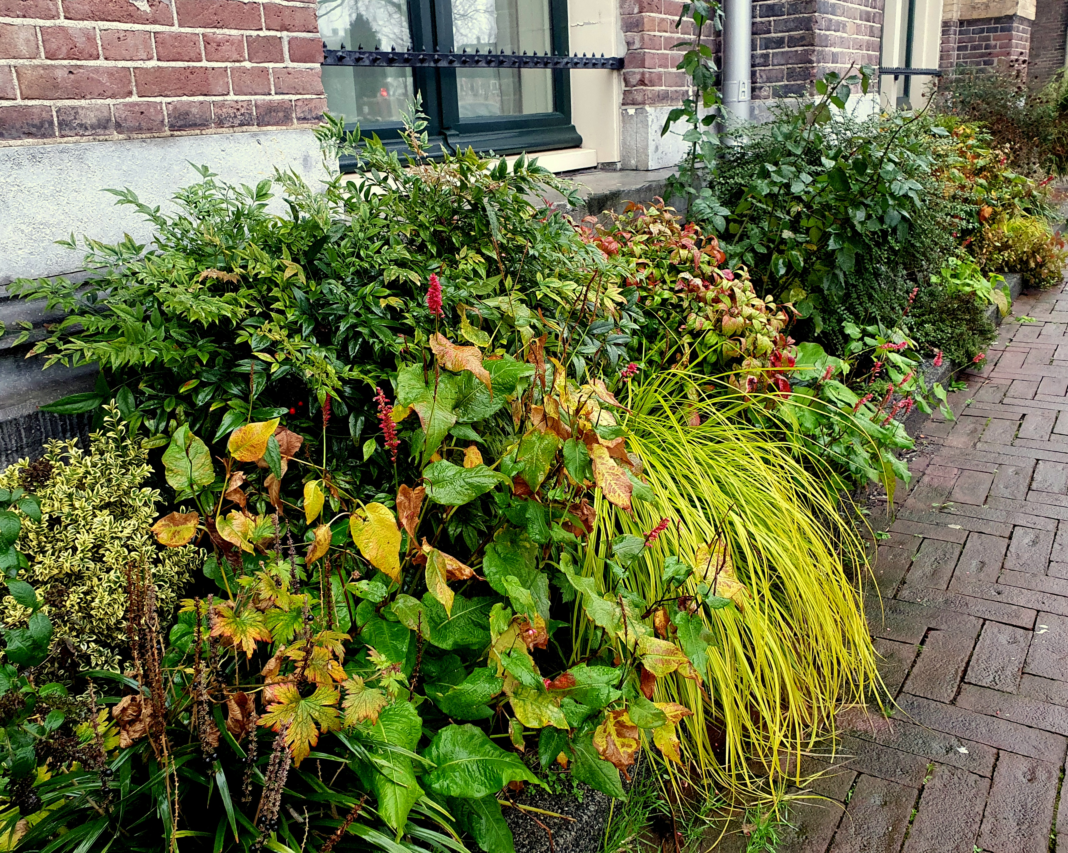 Harry Pierik – Gevelborders aan de Amsterdamse Oostenburgergracht deel 2