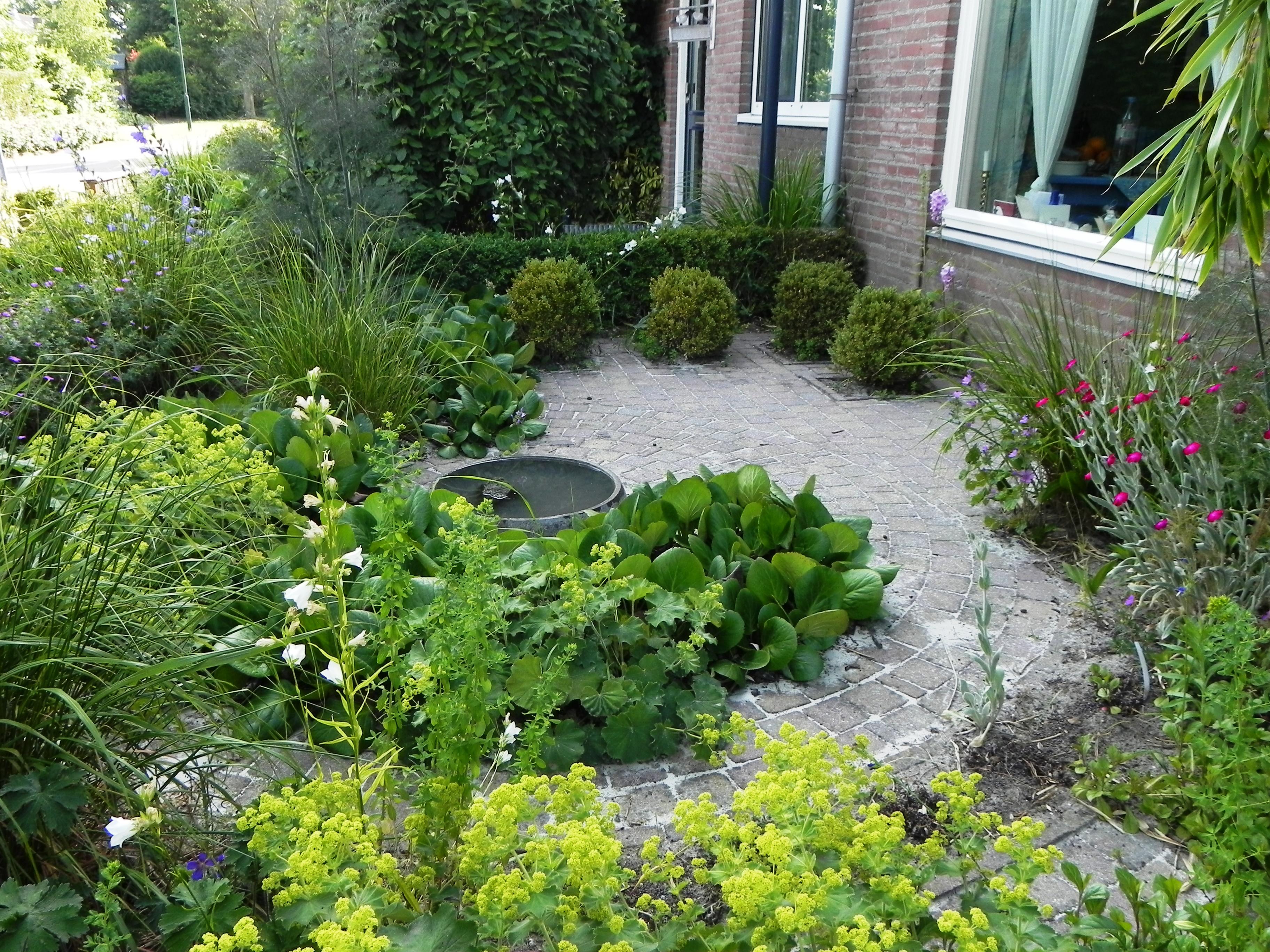 Jeanne van Rijs: Kleine tuin, mooie tuin! Deel 2