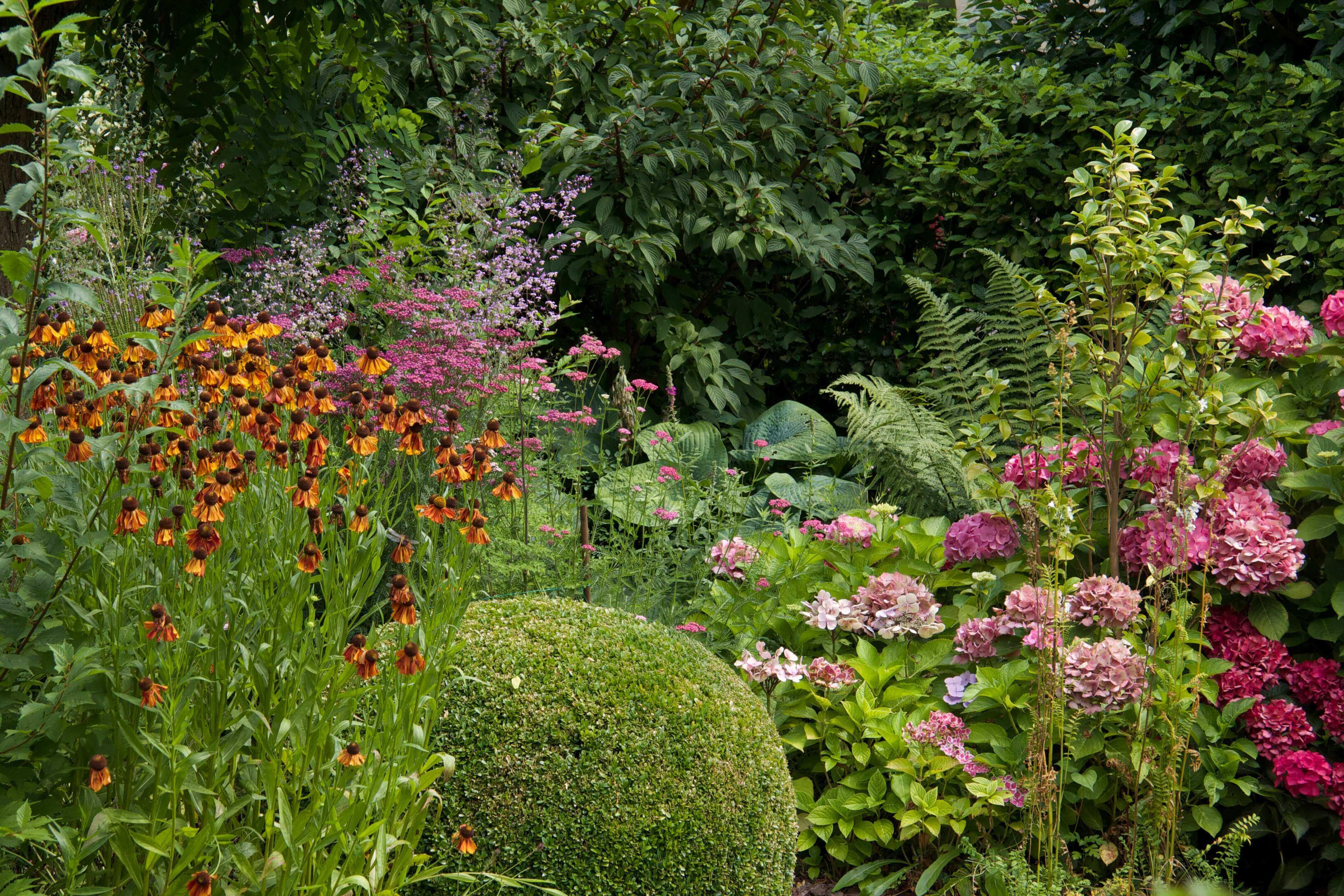 Een volgroeide Romantische tuin met volop bloei en diervriendelijk